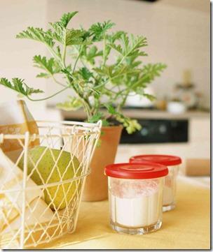 リビングのテーブルの上に植木鉢