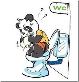 パンダの便秘