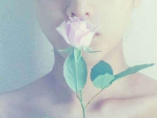 薔薇を口元にあてる女性