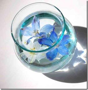 澄んだ水に浮かぶコップの花