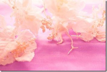 幻想的な花
